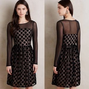 NWT Anthropologie Dottie Dress with Sheer Sleeves